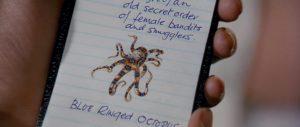 octopussy007octopussy (3)