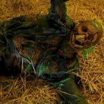 Le Manuel des Monstres, N°54 – Squeakie, le Canari Humain