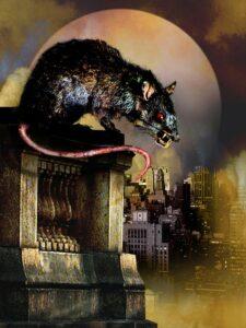 rats2003 (3)