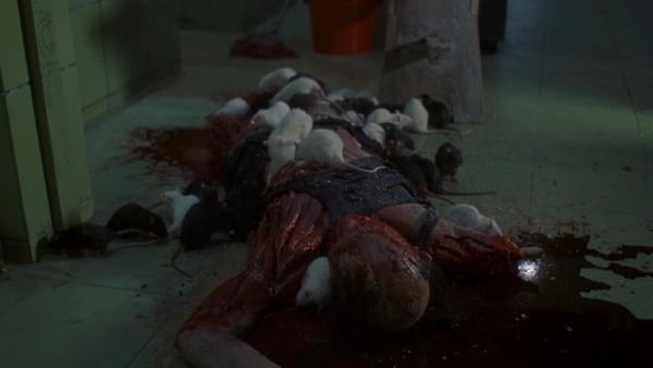 rats2003 (9)