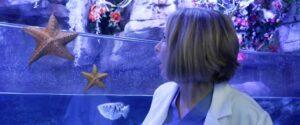 aquariumofthedead (5)