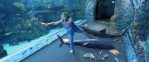 aquariumofthedead (9)